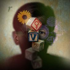 Gestalt Psikolojisi Nedir?