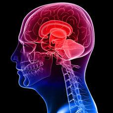 Psikometri Nedir?
