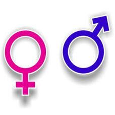 Cinsiyet Farklılıkları Nelerdir?