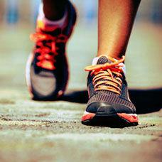 Spora Başlamak