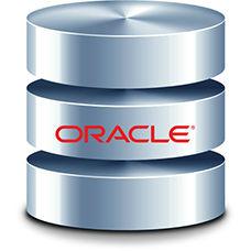 Oracle Veritabanı ve Güvenlik