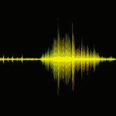 Sesin Temel Nitelikleri Nelerdir?