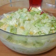 5 Dakikada Elma Salatası Tarifi