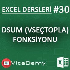 Excel DSUM (VSEÇTOPLA) Fonksiyonu Kullanımı ve Örnekleri