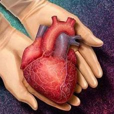 Türkiye'de Yapılan ilk Kalp Nakli
