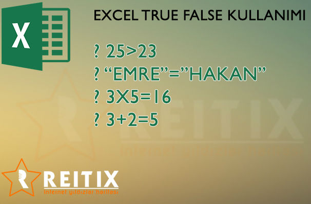 excel true false