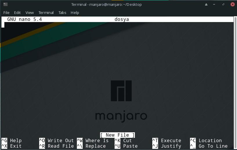 linux nano command