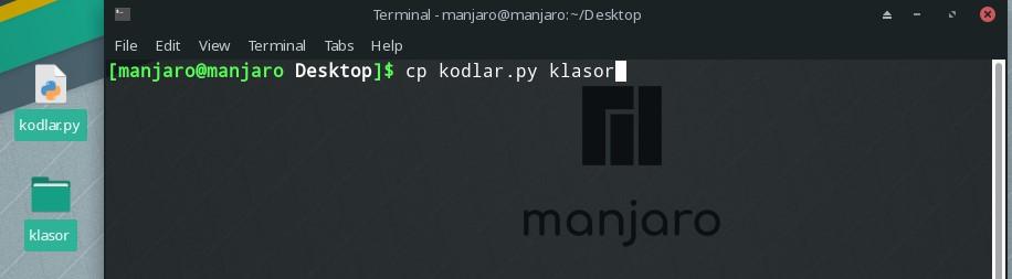linux terminal copy file