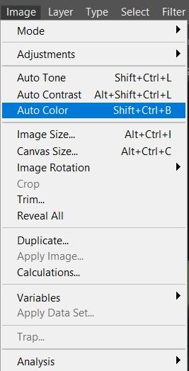 photoshop auto color menu